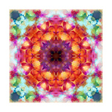 Flower Mandala 6395 Photographic Print by Alaya Gadeh