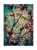 Alaya Gadeh - Thinking Of You Spring - Fotografik Baskı