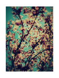 Thinking Of You Spring Photographic Print by Alaya Gadeh