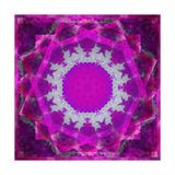 Mystic Shining Violets II Photographic Print by Alaya Gadeh