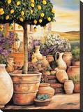 Lemon Topiary Stretched Canvas Print by Eduardo Moreau