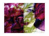 Deep Purple Rose I Photographic Print by Alaya Gadeh