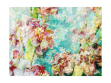 Luscent Flowers Photographic Print by Alaya Gadeh