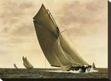 Newport, 1903 Stretched Canvas Print by William Matthews