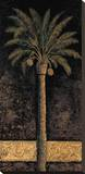Dusk Palms I Stretched Canvas Print by Andre Mazo