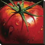 Tomato Stretched Canvas Print by  Alma'ch