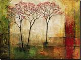 Morning Luster II Stretched Canvas Print by Mike Klung