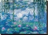 Nympheas Leinwand von Claude Monet