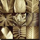Tropical Leaves II Stretched Canvas Print by Caroline Kelly