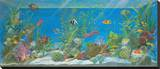 Acquario Stretched Canvas Print by Isabella Cuccato