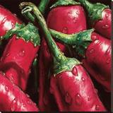 Hot Peppers Stretched Canvas Print by  Alma'ch