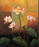 Lotus Stretched Canvas Print by Jill Deveraux