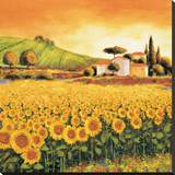 Valley of Sunflowers Stretched Canvas Print by Richard Leblanc