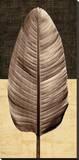 Palm Leaf II Stretched Canvas Print by John Seba