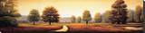 Landscape Panorama I Stretched Canvas Print by Ryan Franklin