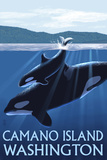 Camano Island, Washington - Orca and Calf Prints by  Lantern Press