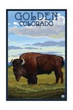 Golden, Colorado - Bison Scene Posters by  Lantern Press