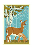Deer and Fawn Posters by  Lantern Press