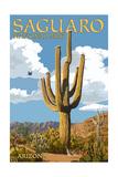 Saguaro National Park, Arizona - Roadrunner and Trail Art by  Lantern Press