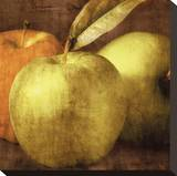 Apples Stretched Canvas Print by Caroline Kelly