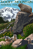Rocky Mountain National Park - Marmots Prints by  Lantern Press