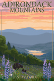 Adirondacks Mountains, New York State - Bears and Spring Flowers Poster