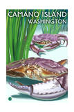 Camano Island, Washington - Dungeness Crab Posters by  Lantern Press
