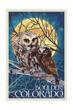 Boulder, Colorado - Owl and Owlet Art by  Lantern Press