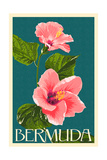 Bermuda - Pink Hibiscus Prints by  Lantern Press