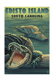 Edisto Island, South Carolina - Alligator Poster