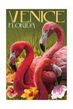Venice, Florida - Flamingos Prints by  Lantern Press