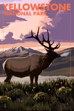 Yellowstone National Park - Elk and Sunset Posters by  Lantern Press