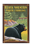 Black Mountain, North Carolina - Black Bear in Forest Posters by  Lantern Press