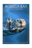 Bodega Bay, California - Sea Otter Posters by  Lantern Press