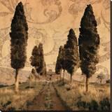 Toscana I Reproducción en lienzo de la lámina por Colin Floyd