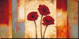 Poppies in Rhythm I Stretched Canvas Print by Brian Francis