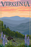 Virginia - Black Bear and Cubs Spring Flowers Premium Giclee Print by  Lantern Press