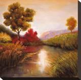 Idyllic I Stretched Canvas Print by Jeffrey Leonard
