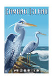 Camano Island, Washington - Blue Heron Prints by  Lantern Press