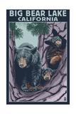 Big Bear Lake, California -Bear and Cubs Prints by  Lantern Press