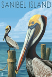 Sanibel Island, Florida - Pelican Art par  Lantern Press