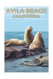 Avila Beach, California - Sea Lions Poster autor Lantern Press
