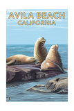 Avila Beach, California - Sea Lions Print by  Lantern Press
