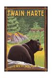 Twain Harte, California - Black Bear in Forest Posters par  Lantern Press