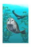 Harbor Seals Prints by  Lantern Press
