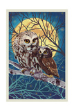 Owl and Owlet Prints