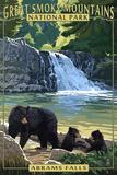 Abrams Falls - Great Smoky Mountains National Park, TN Posters par  Lantern Press