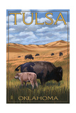 Tulsa, Oklahoma - Buffalo and Calf Art by  Lantern Press