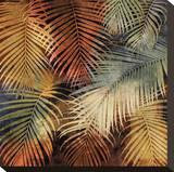 The Seychelles I Stretched Canvas Print by John Seba