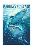 Martha's Vineyard - Stylized Tiger Sharks Prints by  Lantern Press